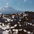 170507_asakonarahashi_cover